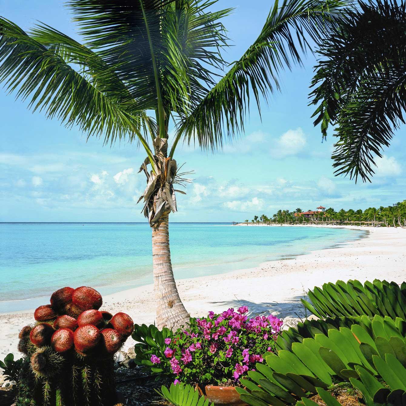 Antigua Vacation